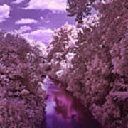Infrared River Art Print