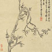 Ink Painting Plum Blossom Art Print