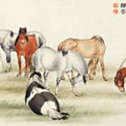 Ink Painting Stud Of Horses Art Print