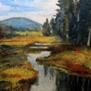 Inlet In Indian Lake Art Print