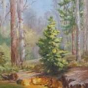 Inlet,winter's End, Mcdowell Art Print