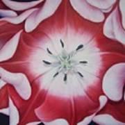Inner Faz Art Print