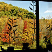 Inside Looking Outside At Fall Splendor Art Print