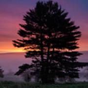 Intense Dawn Sky Over A Foggy South Amherst Art Print