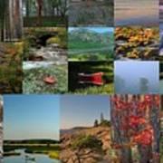 Intimate New England Landscape Photography Art Print