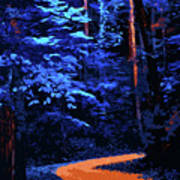 Into The Forest Of Night Art Print