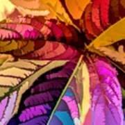 Into The Rainbow Art Print