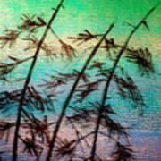 Into the Wind Art Print