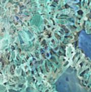Intuition Unraveled Deep Ocean Art Print