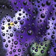 Iris Bubbles Art Print