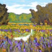 Iris By Creek Art Print