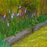 Iris Procession Art Print