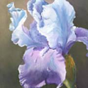 Iris Tears Art Print