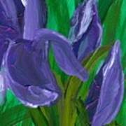 Iris Up Close And Personal Art Print
