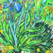 Irises Ala Van Gogh Art Print