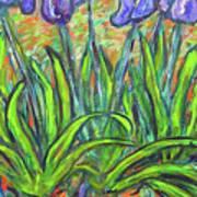 Irises In A Sunny Garden Art Print