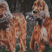 Irish Setters Art Print