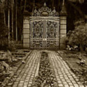 Iron Gate Art Print
