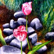 Isaiah's Tulips Art Print