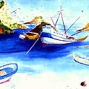 Isla Isabela Art Print