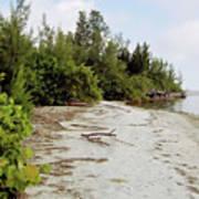 Island - Beach Art Print