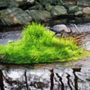 Island In The Stream Art Print