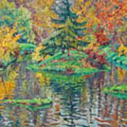 Island On The Park Pond Art Print