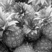 Island Pineapples Art Print