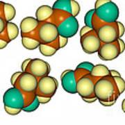 Isovaleric Acid Molecular Models Art Print