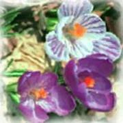 Ist Flowers In The Garden 2010 Art Print