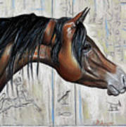 Arabian 5 Art Print