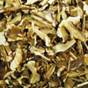 Italian Market Dried Mushrooms Art Print