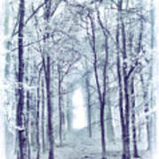 Its In The Trees Art Print