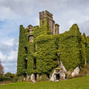 Ivy Covered Ruined Castle Ireland Art Print