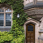 Ivy League Princeton Art Print