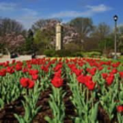 Jackson Park Spring Tulips 2 Art Print