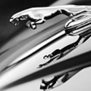 Jaguar Car Hood Ornament Black And White Art Print