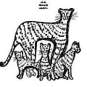 Jaguar Family Art Print