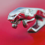 Jaguar Hood Ornament Art Print