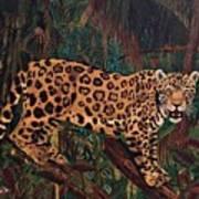 Jaguar's Domain Art Print
