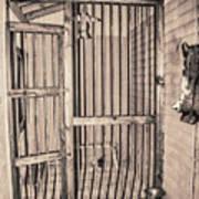 Jail House Interior Art Print