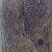 Jan 4 Art Print