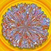 Janet -- Floral Disk Art Print