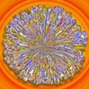 Jannell -- Floral Disk Art Print