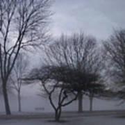 January Fog 6 Art Print
