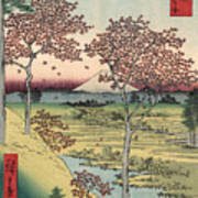 Japan: Maple Trees, 1858 Art Print