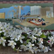Japanese Cherry Blossoms Branch  Art Print