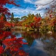 Japanese Foliage Art Print