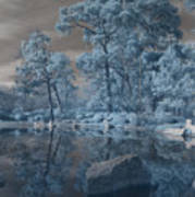 Japanese Tea Garden Infrared Center Art Print