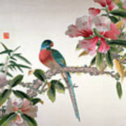 Jay On A Flowering Branch Print by Chinese School